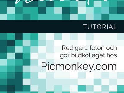 Redigera bilder på nätet med Picmonkey
