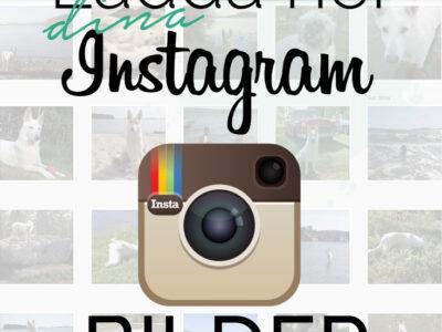 Ladda ner bilder från Instagram