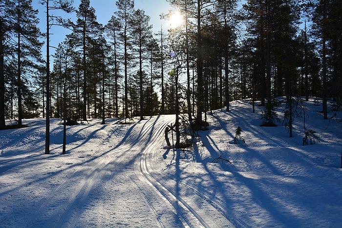 Promenad på Rutberget
