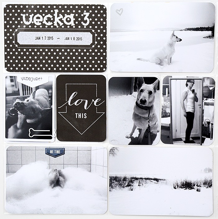 You are currently viewing Project Life – vecka 1-3