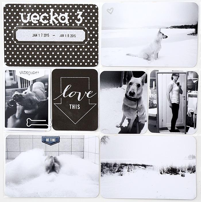 Project Life - vecka 1-3