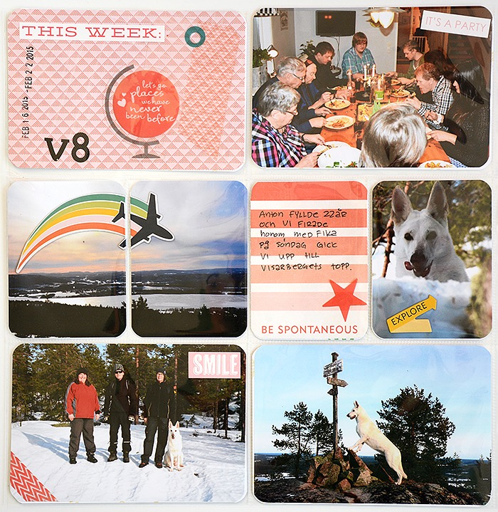 Vecka 7-8 - vecka 8