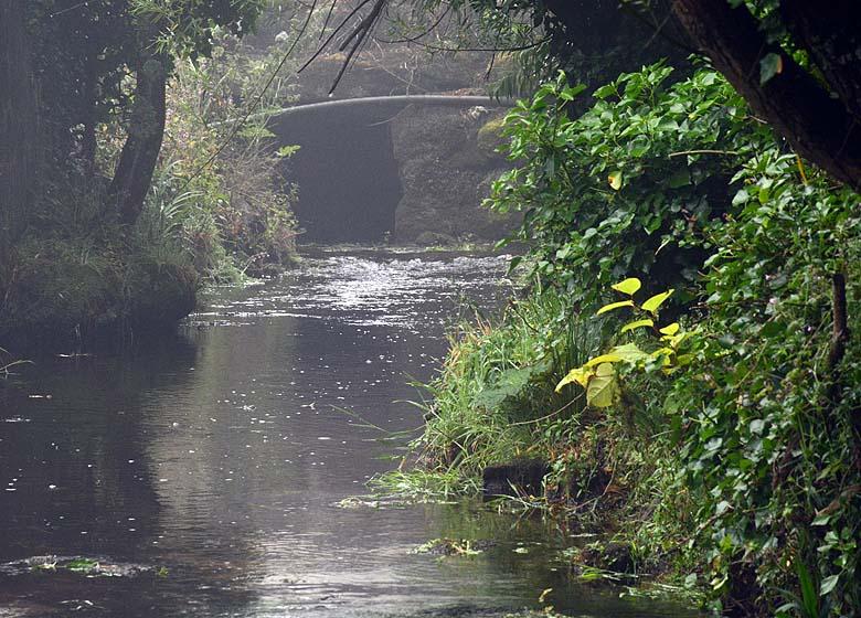 bäck i Cornwall