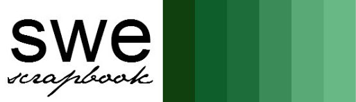 Swe 2016_logo