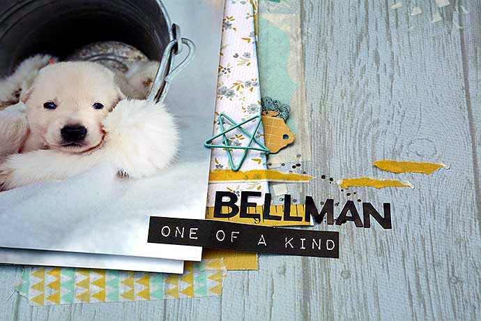 Bellman LO by Helens Color LIfe