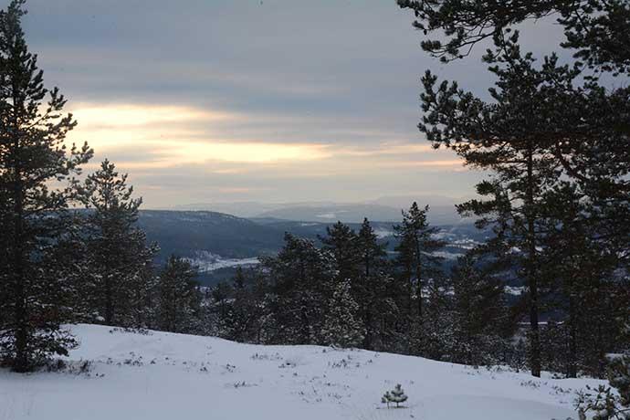 visarbergets-utsikt-av-helen-thalen