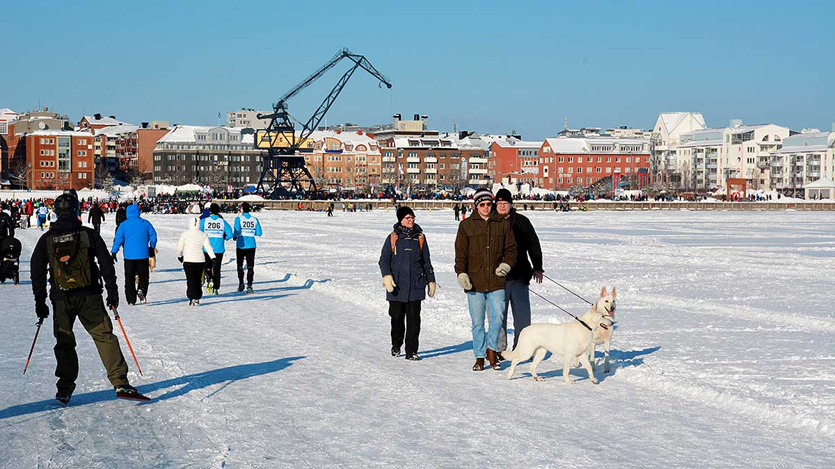 Luleå on ice
