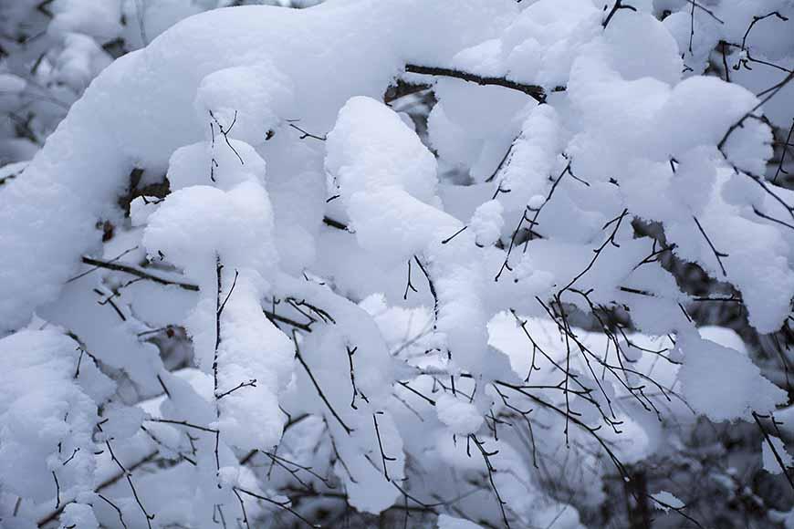 Undern snön av Helen Thalen