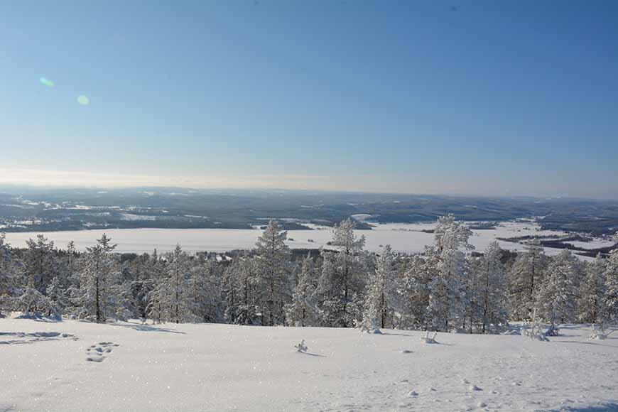 Utsikt från Visarbergets topp av Helen Thalen