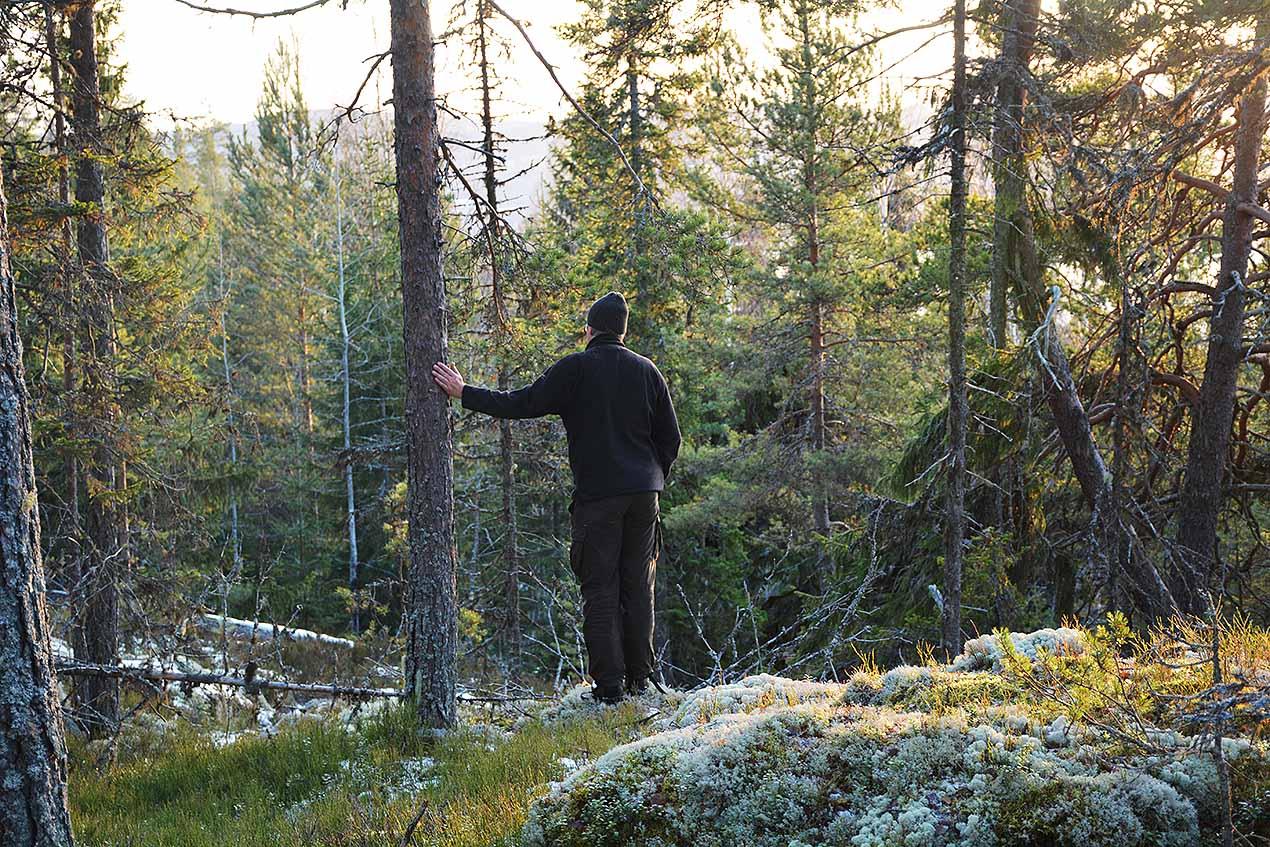 131: Herre på täppan (158/365)