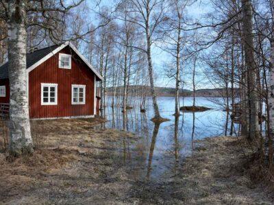 244: Sjöutsikt (129/365)