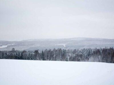 Eget tema #30: Monokromt landskap (343/365)