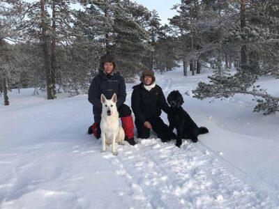 334: Vinterpromenad (10/365)