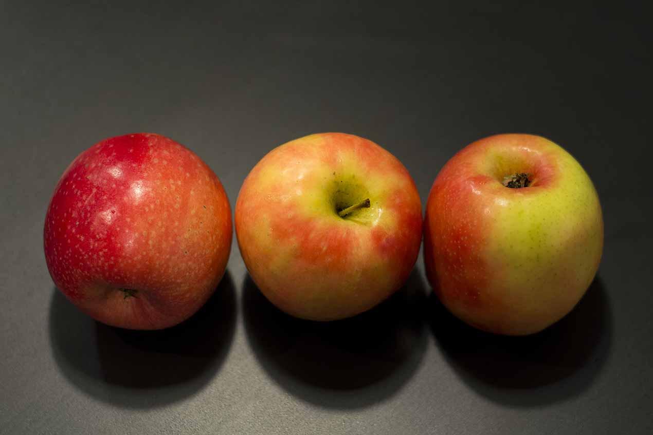 357: Äpplen (23/365)