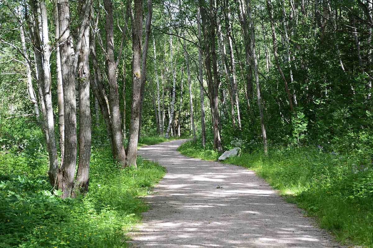 Promenadvägen i Herrgårdsparken av Helen Thalen