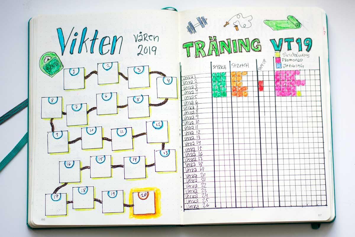 Bullet Journal för vikt och träning