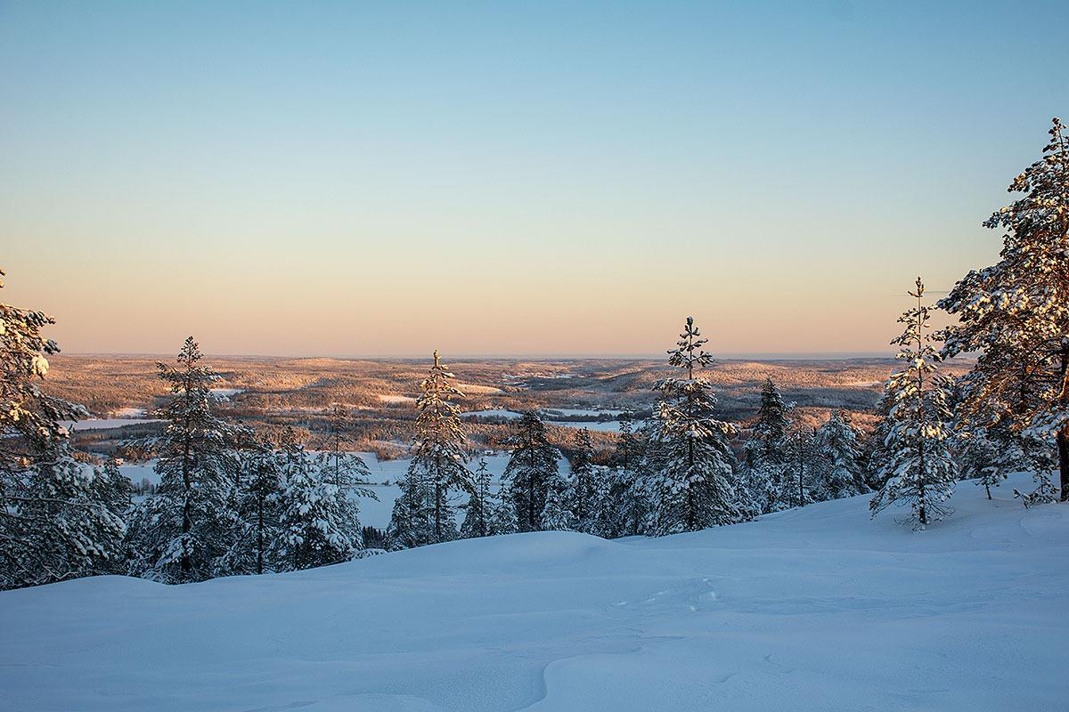 Utsikt mot nordost från Visarbergets topp av Helen Thalen